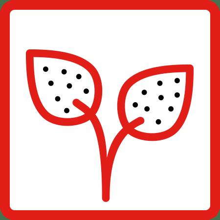 Fungicidas