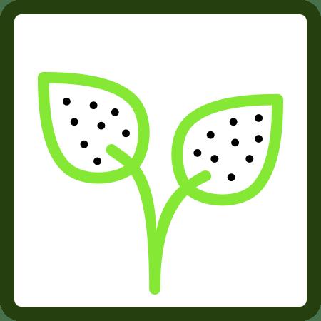 Fungicidas (ECO)