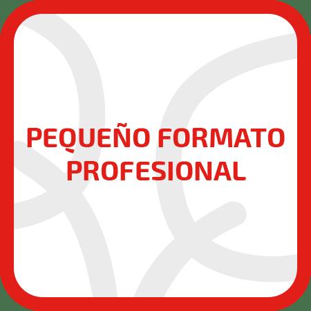 PEQUEÑO FORMATO PROFESIONAL