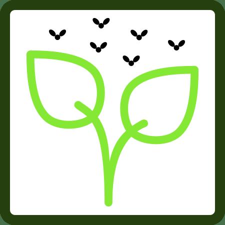 Insecticidas (ECO)