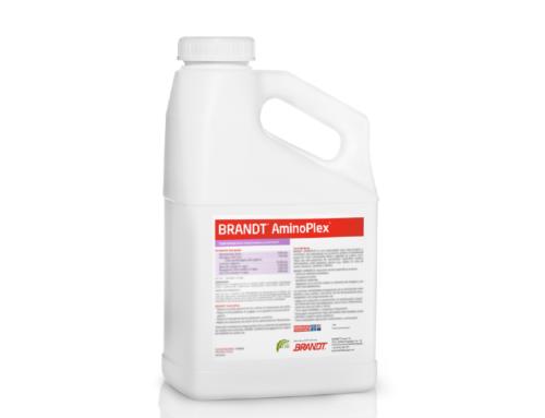 BRANDT® AminoPlexTM, nuestra especialidad bioactivadora y nutricional que aumenta la salud de las plantas y su productividad