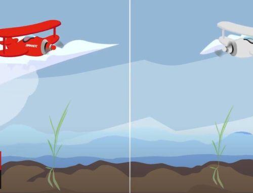 BRANDT InVigo, una alternativa que ayuda a los arroceros a combatir los problemas de salinidad